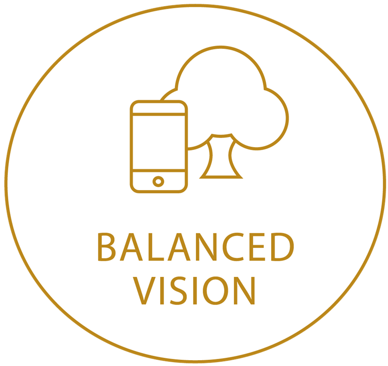 Gold circle icon showing balanced vision