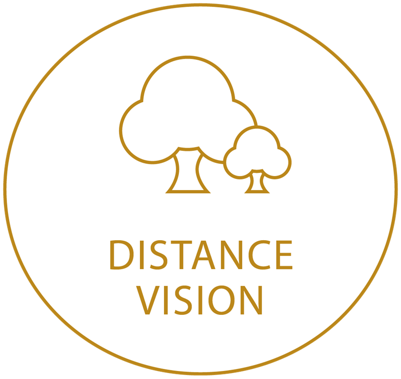 Gold circle icon showing distance vision